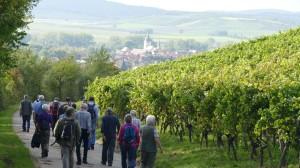 2014-09-27_Jochen_Sacher_RSG-Weinfahrt_05