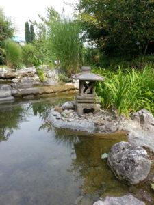 Lotos Garten in Rothenburg (2)